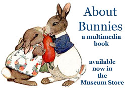 Click Here for About Bunnies multimedia!